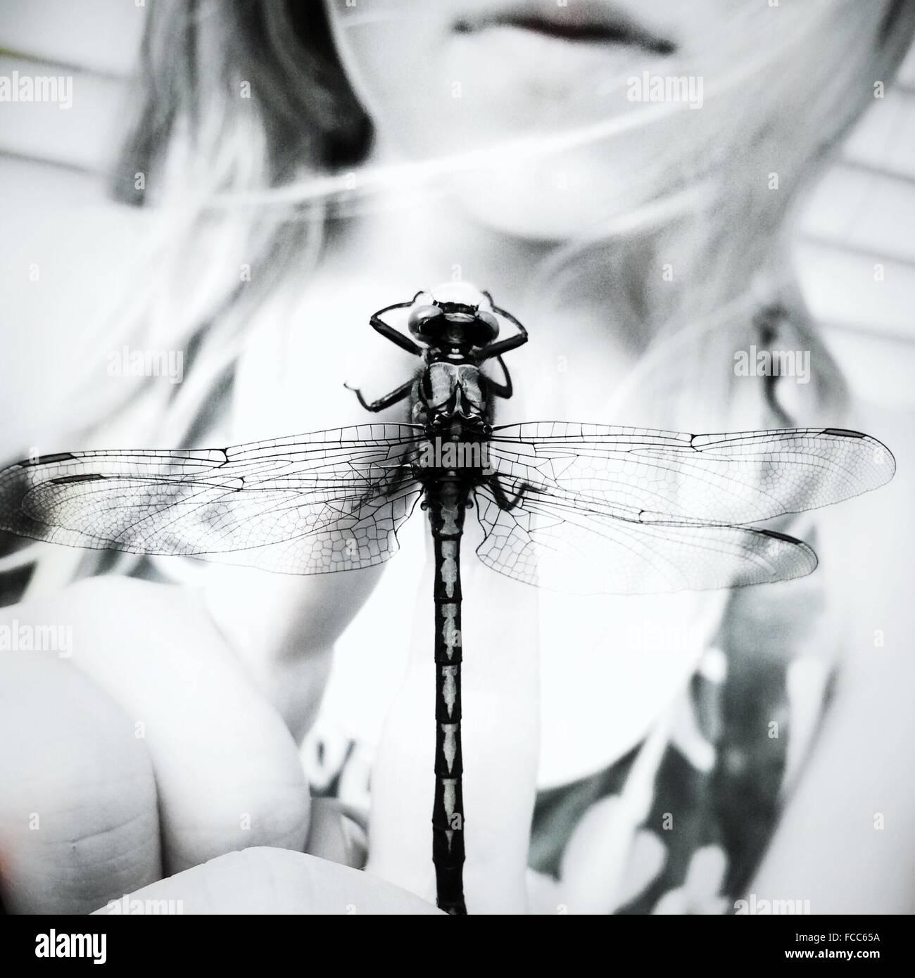 Nahaufnahme einer jungen Frau mit geflügelten Insekt Mittelteil Stockbild
