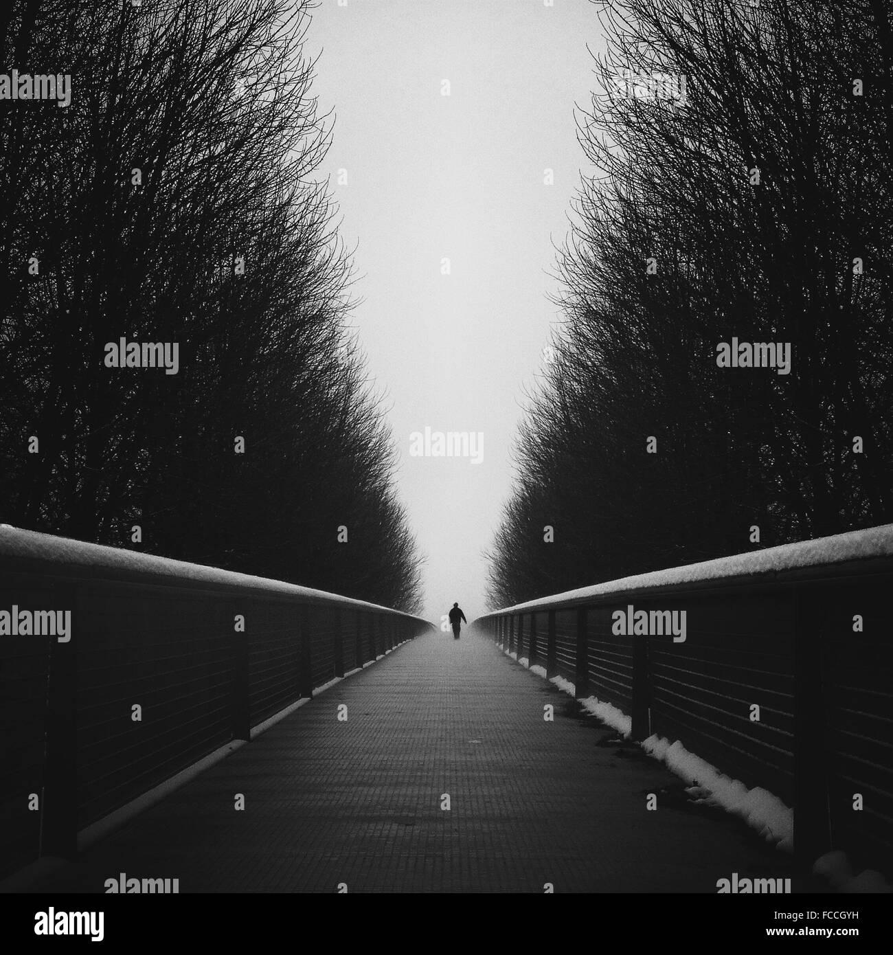 Person zu Fuß am Steg inmitten von Bäumen Stockbild