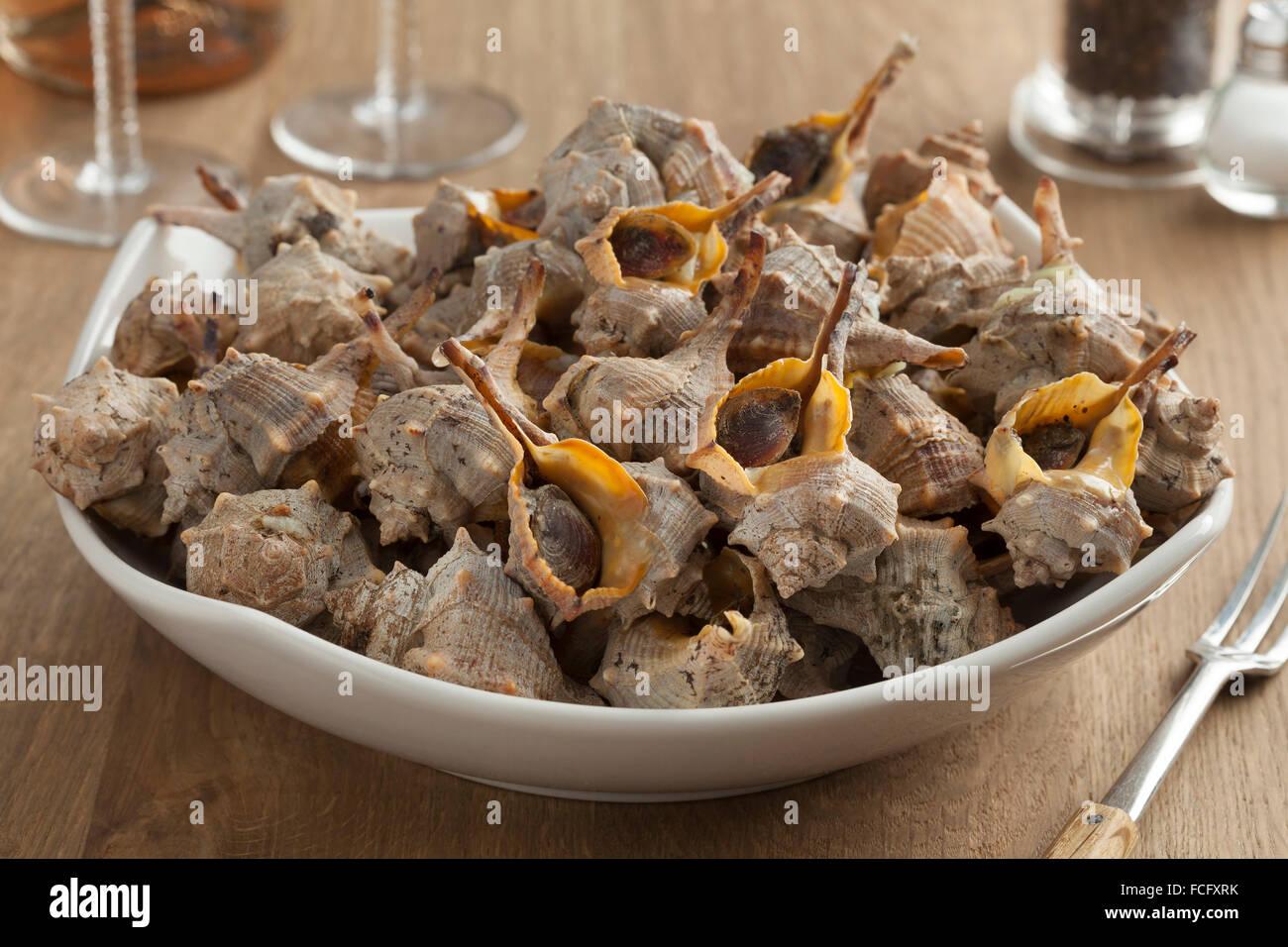 Schüssel mit gekochten italienischen stacheligen Farbstoff-murex Stockbild