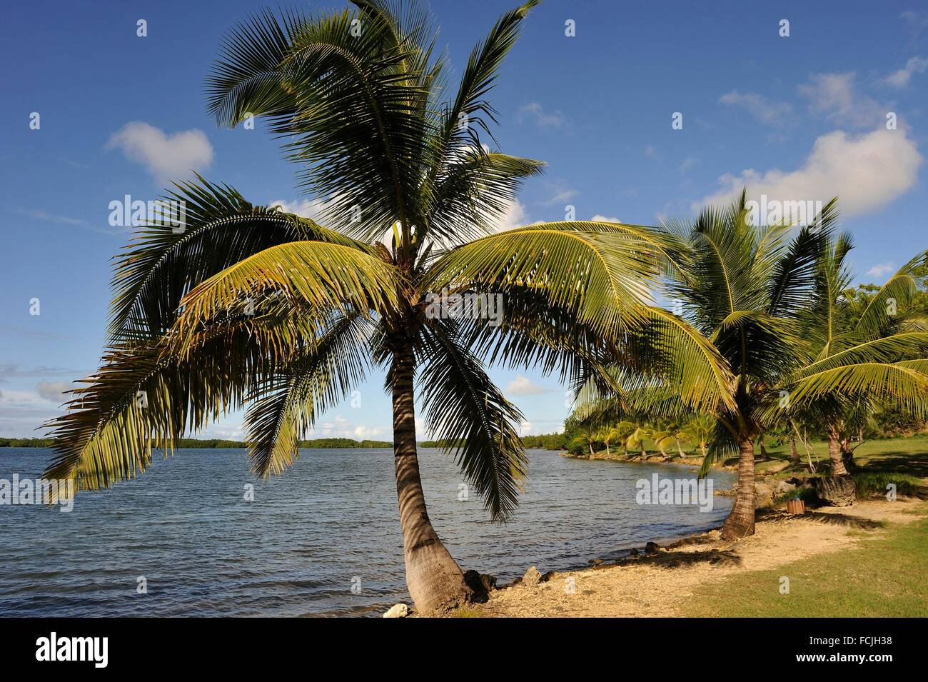 Babin Strand, Morne-a-L´eau, Grande-Terre, Guadeloupe, Überseeregion Frankreich, Moorea Inseln, kleine Stockbild