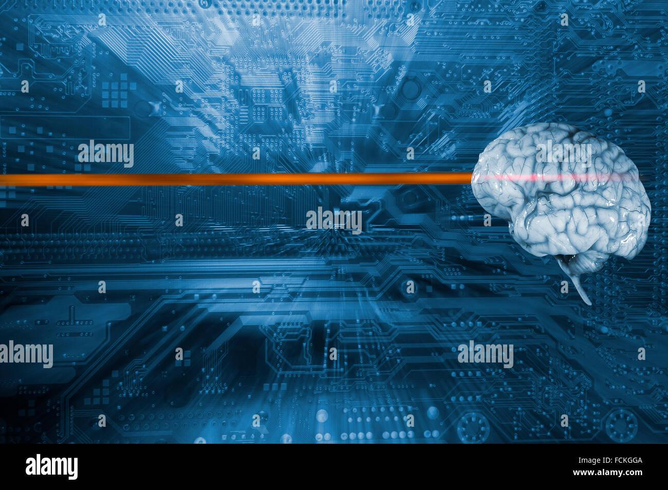 menschliche Gehirn und Computer Leiterplatte, künstliche Intelligenz Stockbild