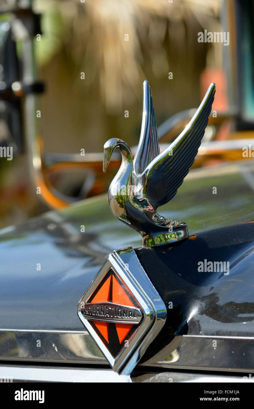 Auto Logo Mit Vogel Jahrgang Guatemala Mittelamerika Stockfoto