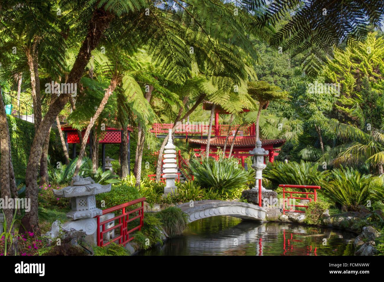 Tropical japanischer Garten in Monte, Madeira, Portugal Stockbild