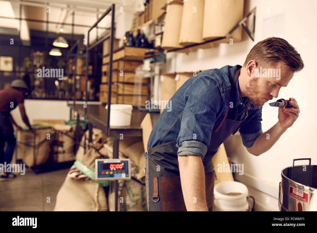 Unternehmer, die Überprüfung des Duft von frisch gerösteten Kaffeebohnen Stockbild