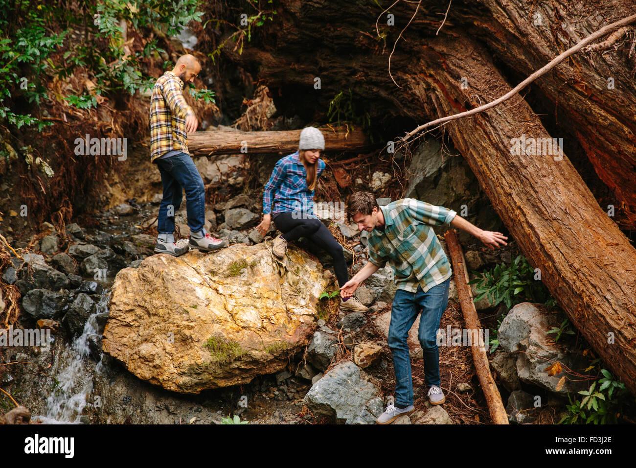 Drei Freunde Wandern durch den Redwood-Wald in Big Sur, Kalifornien. Stockbild