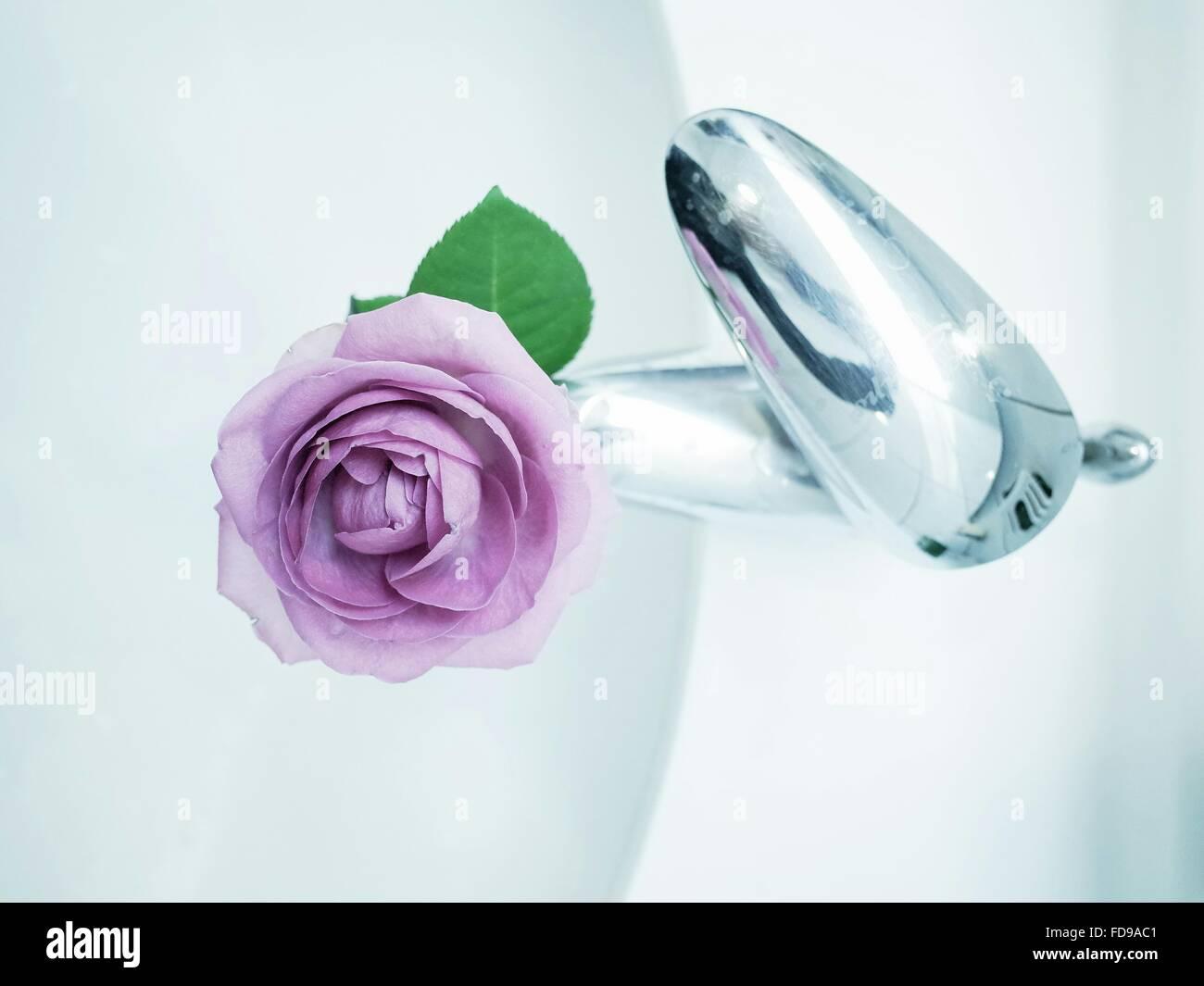 Direkt oben geschossen von lila Rose auf Wasserhahn Stockbild