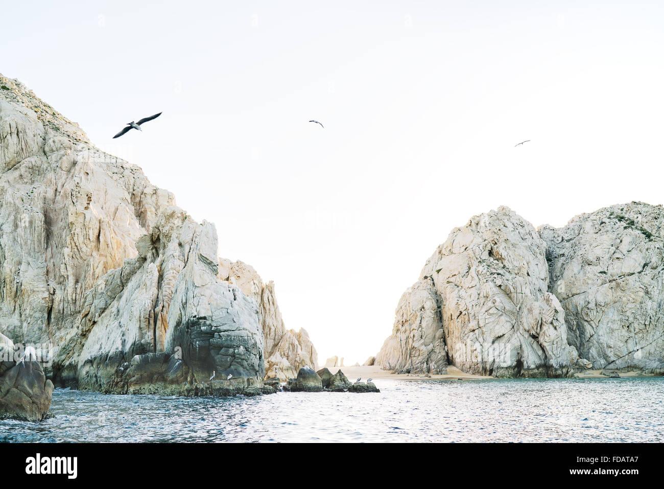 Vögel fliegen über den Pazifischen Ozean und Felsen des Cabo San Lucas, Baja California, Mexiko Stockbild