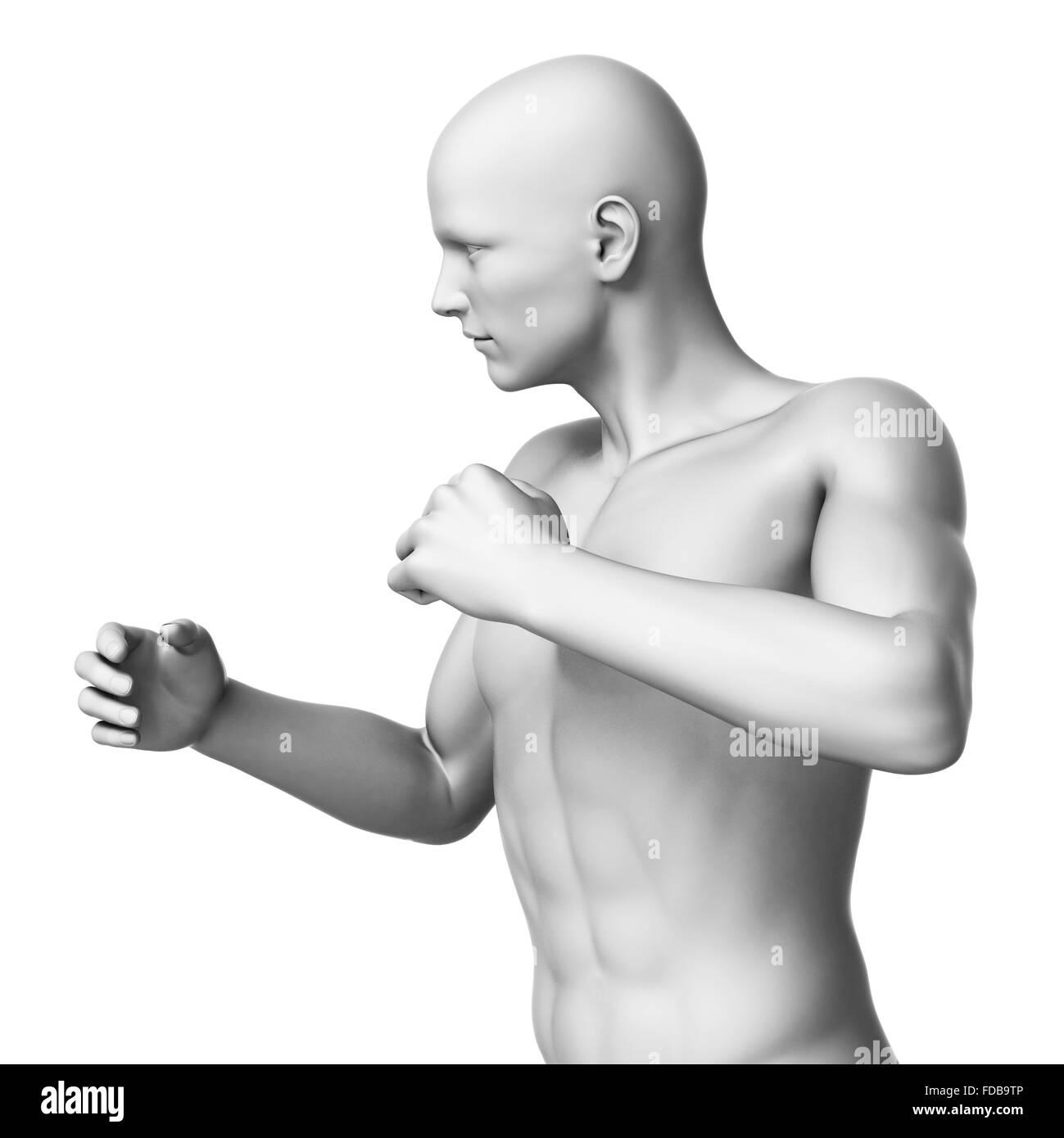 Anatomie eines Mannes mit Arme nach oben, Abbildung Stockfoto, Bild ...