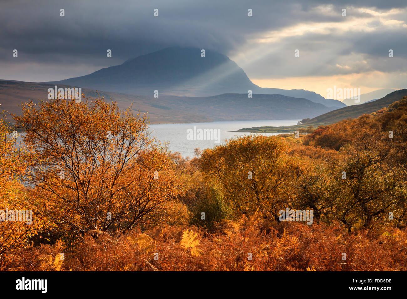 Herbstfärbung auf das westliche Ufer von Loch Loyal in der North West Highlands von Schottland, Stockbild