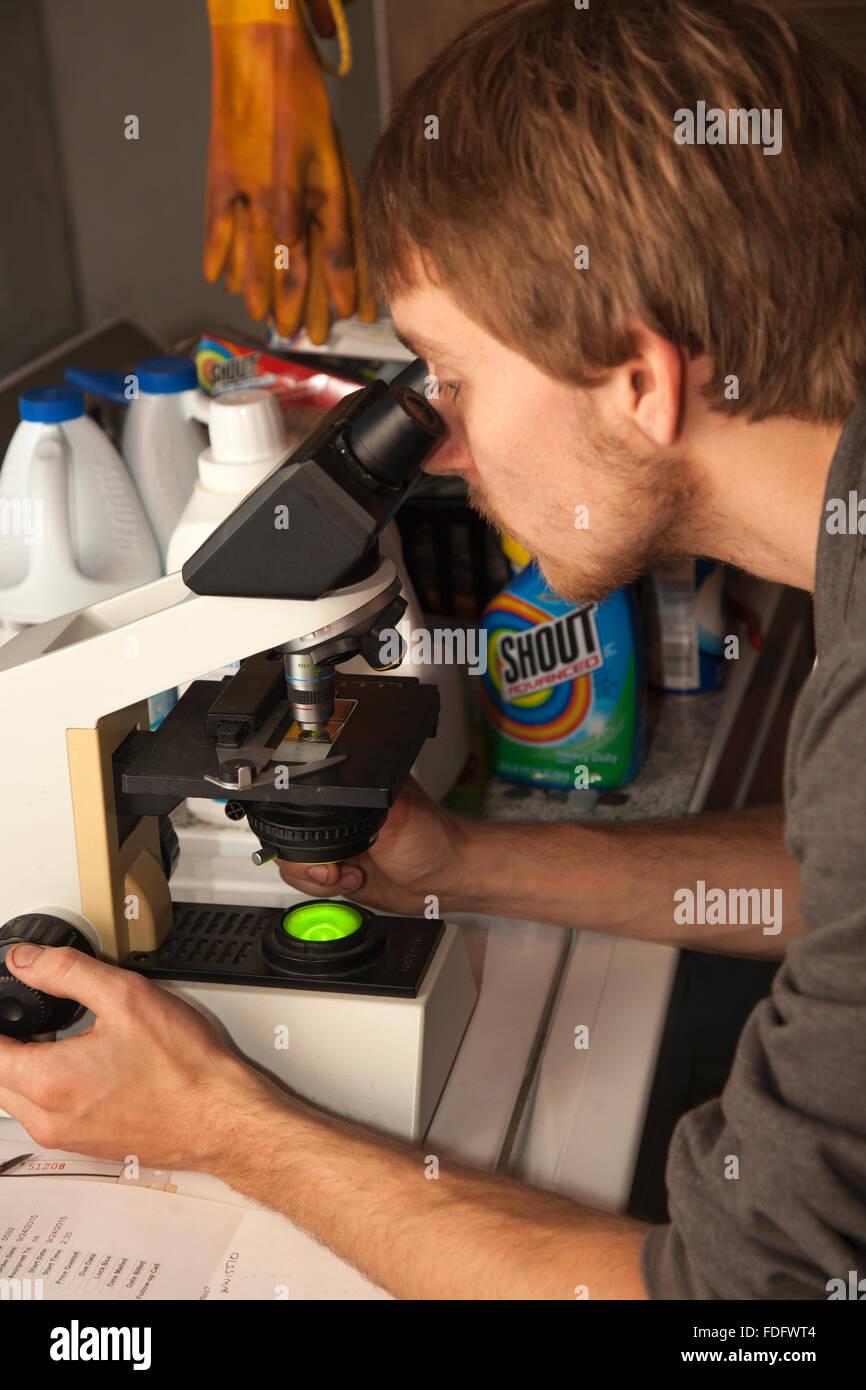Mikroskop für Asbest Partikel im Keller vor Ofen Ersatz fehlender Durchsicht. St Paul Minnesota MN USA Stockbild
