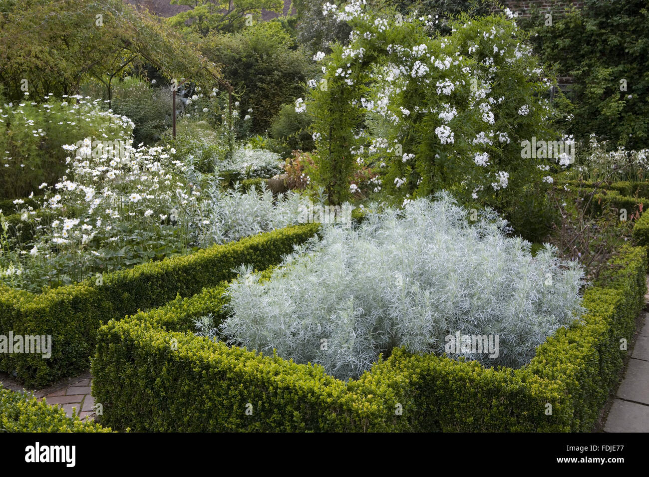 solanum jasminoides 39 album 39 ber dem bogen in der wei e garten sissinghurst castle garden in. Black Bedroom Furniture Sets. Home Design Ideas