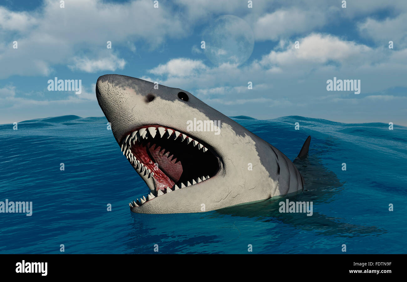 Megalodon Shark Stockfotos & Megalodon Shark Bilder - Alamy
