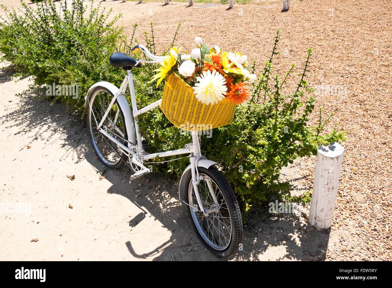 Ein Altes Fahrrad Dekoriert Mit Blumen Ausserhalb Einer Weinfarm