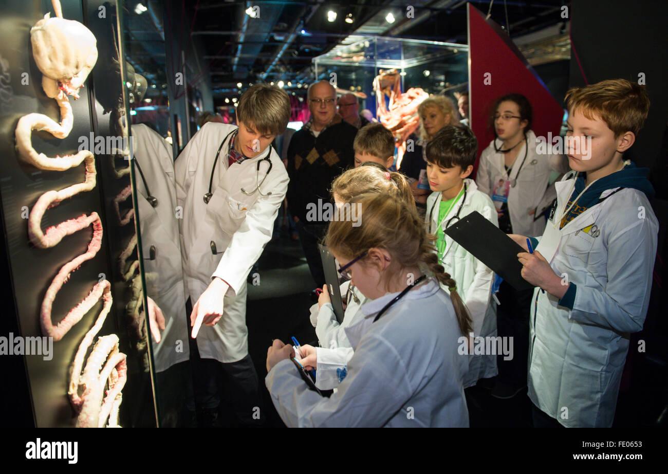 Medizinstudent Daniel Wobetzky (L) erklärt Anatomie des Menschen zu ...