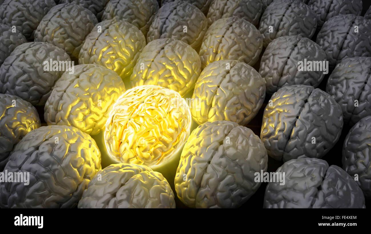 Gehirn eines Genies Stockbild