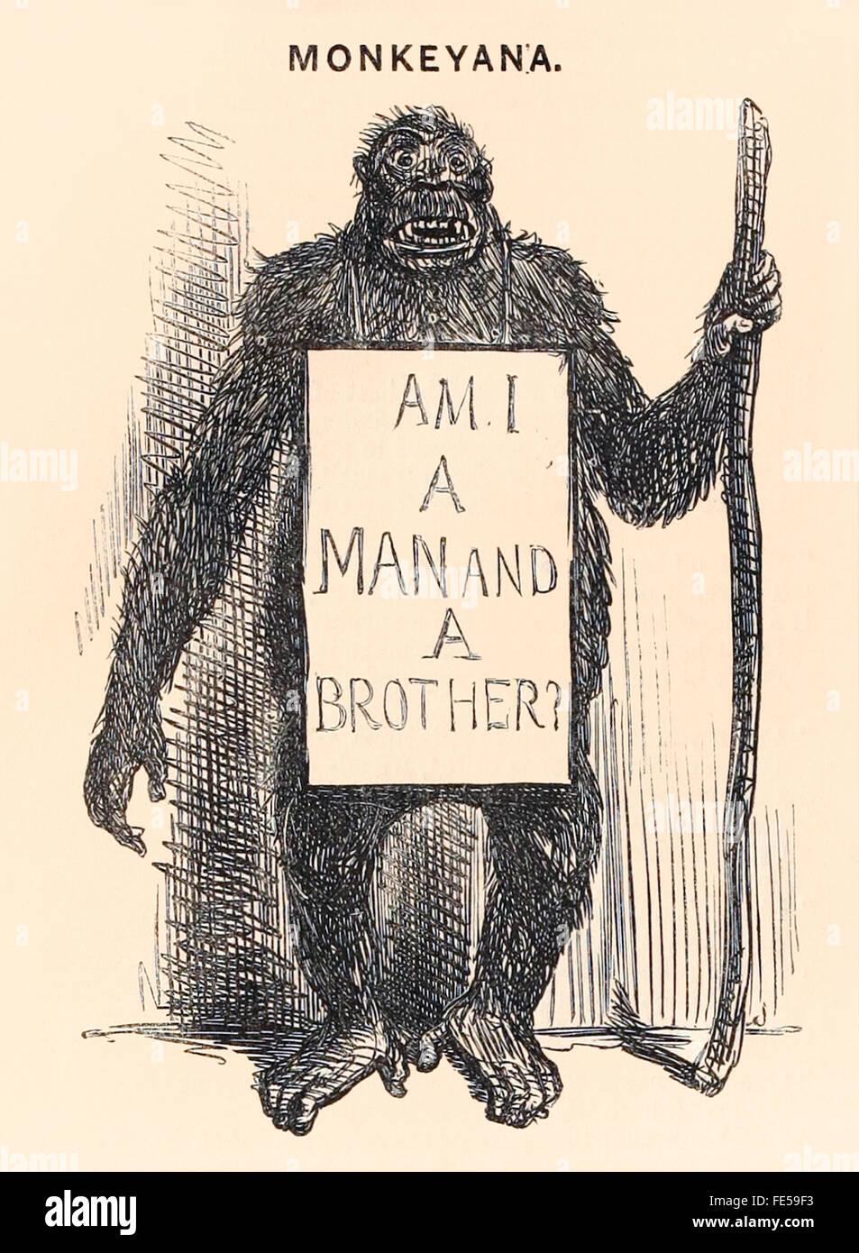 """""""Ich bin ein Mann und ein Bruder?"""" liest einen bettelnden Affen Plakat in diesem Cartoon 'Monkeyana' Stockbild"""
