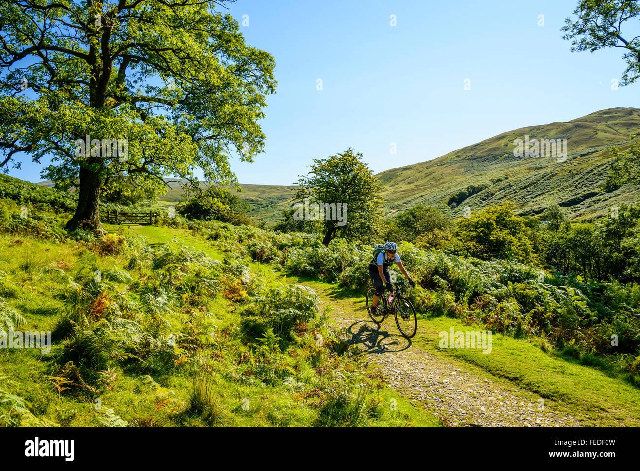 Weibliche Radfahrer auf dem Rasen verfolgen in Cumbria, Barbondale Stockbild