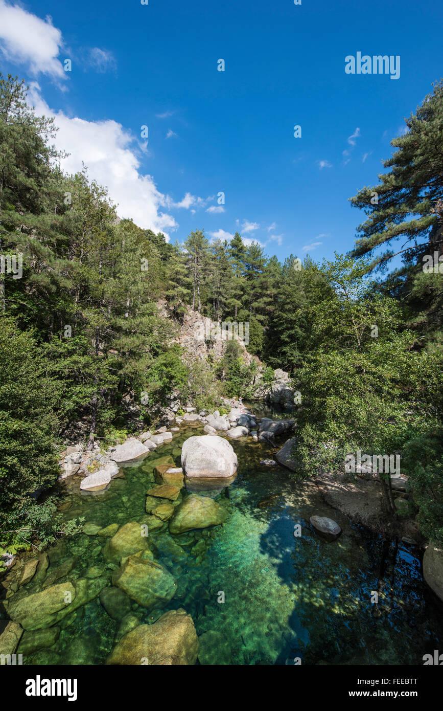 Fluss Tavignano, Corte, Haute-Corse, Korsika, Frankreich Stockbild