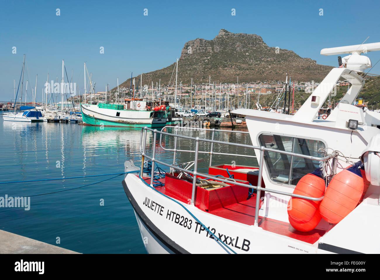 Angelboote/Fischerboote im Hafen von Hout Bay, Kap-Halbinsel, Stadtverwaltung von Kapstadt, Westkap, Südafrika Stockfoto