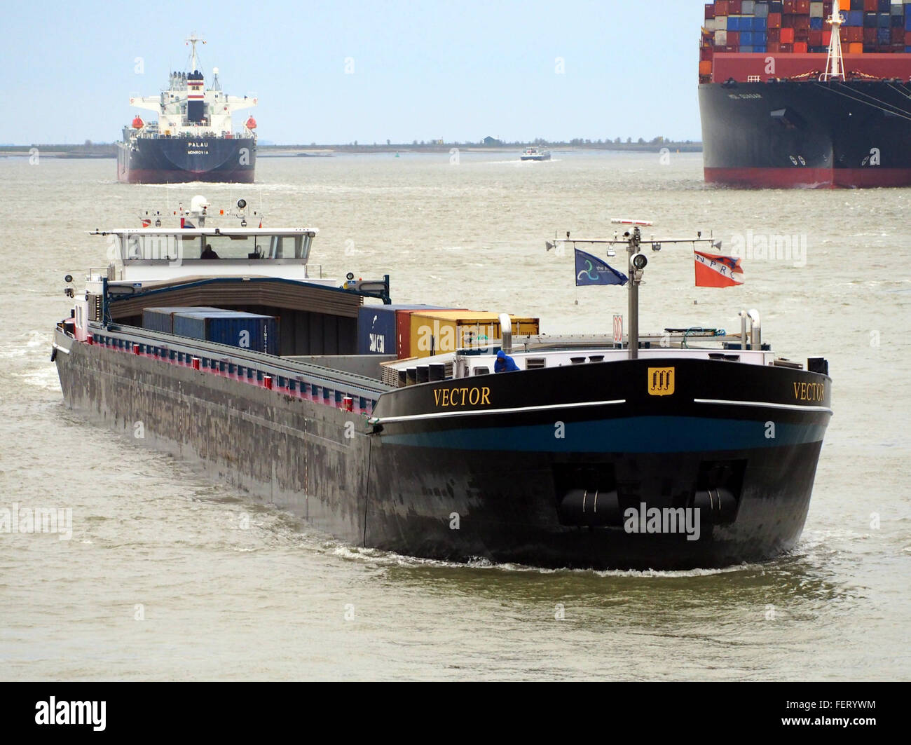 Vektor (Schiff, 2008), ENI 02331015 Hafen von Antwerpen pic1 Stockbild