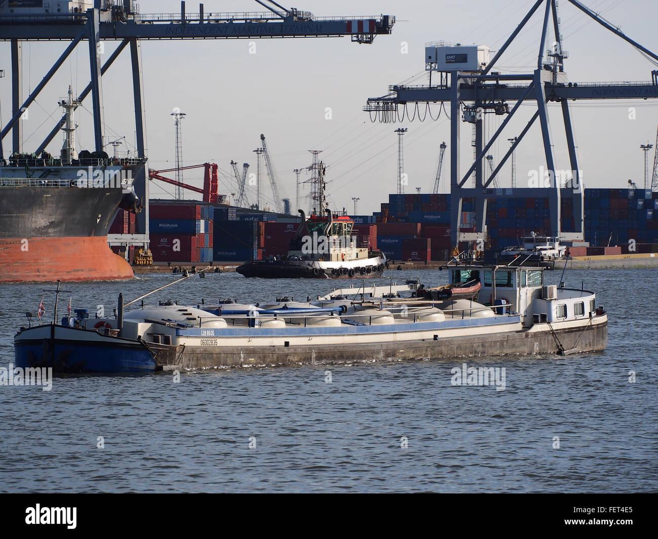 Mo-Idee (Schiff, 1950) ENI 06002835 Hafen von Antwerpen Stockbild