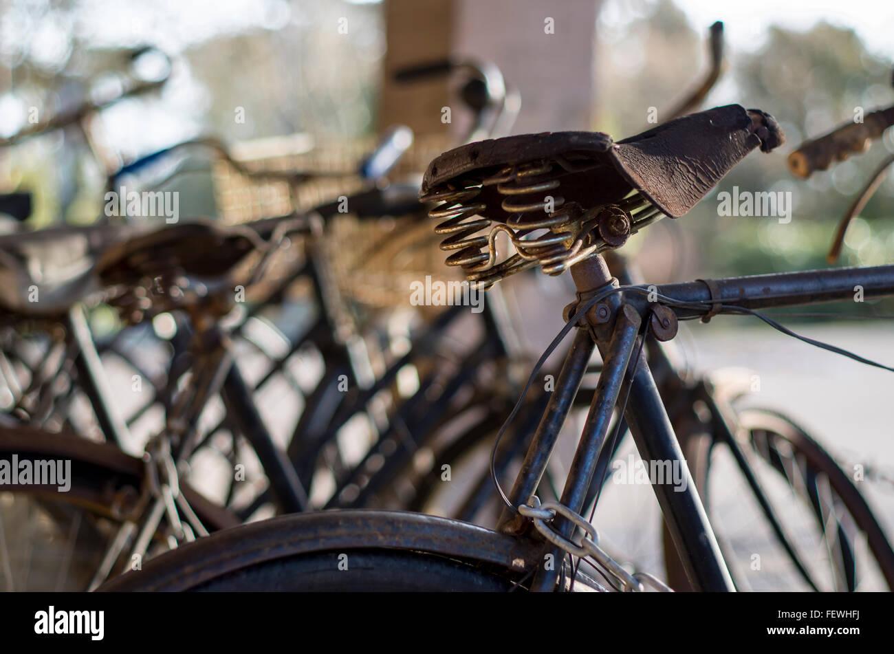Eine Reihe von vIntage Fahrräder Stockfoto