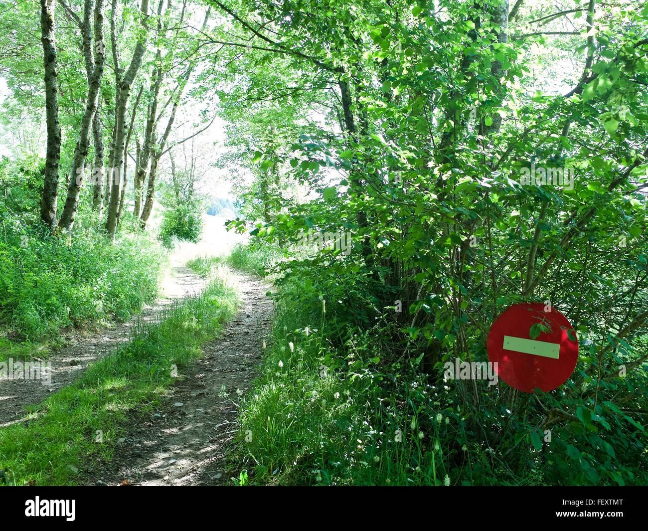 Blick auf geben Sie keine Zeichen von Feldweg im Wald Stockbild