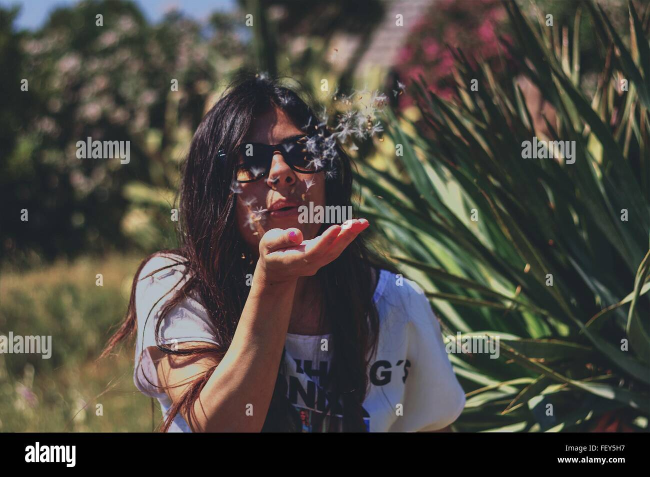 Vorderansicht der jungen Frau weht Löwenzahnsamen über Palm Stockbild