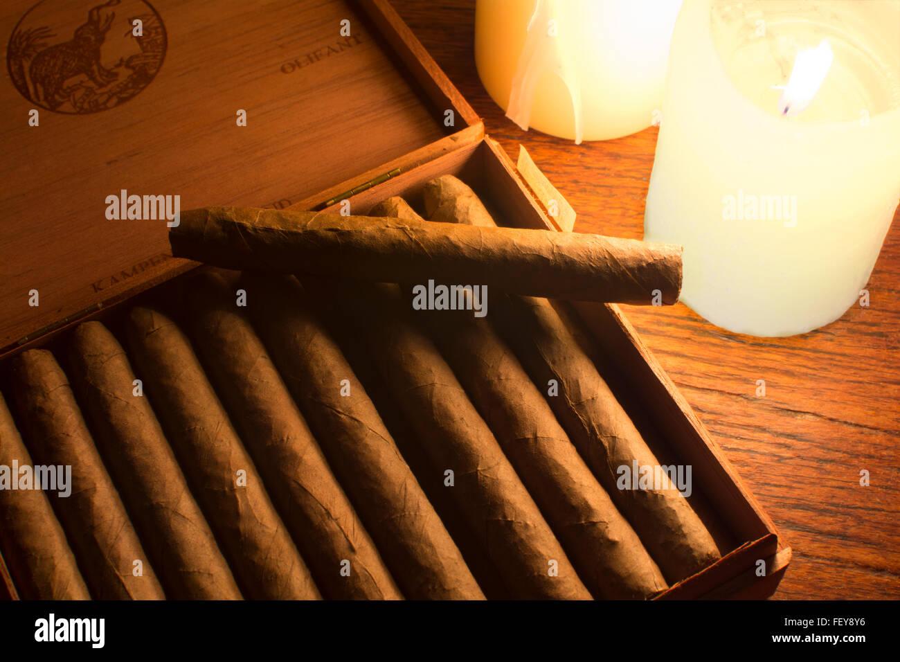 Zigarren bei Kerzenschein. Eine Schachtel mit De Olifant Zigarren aus Kampen, Holland (Niederlande) Stockbild