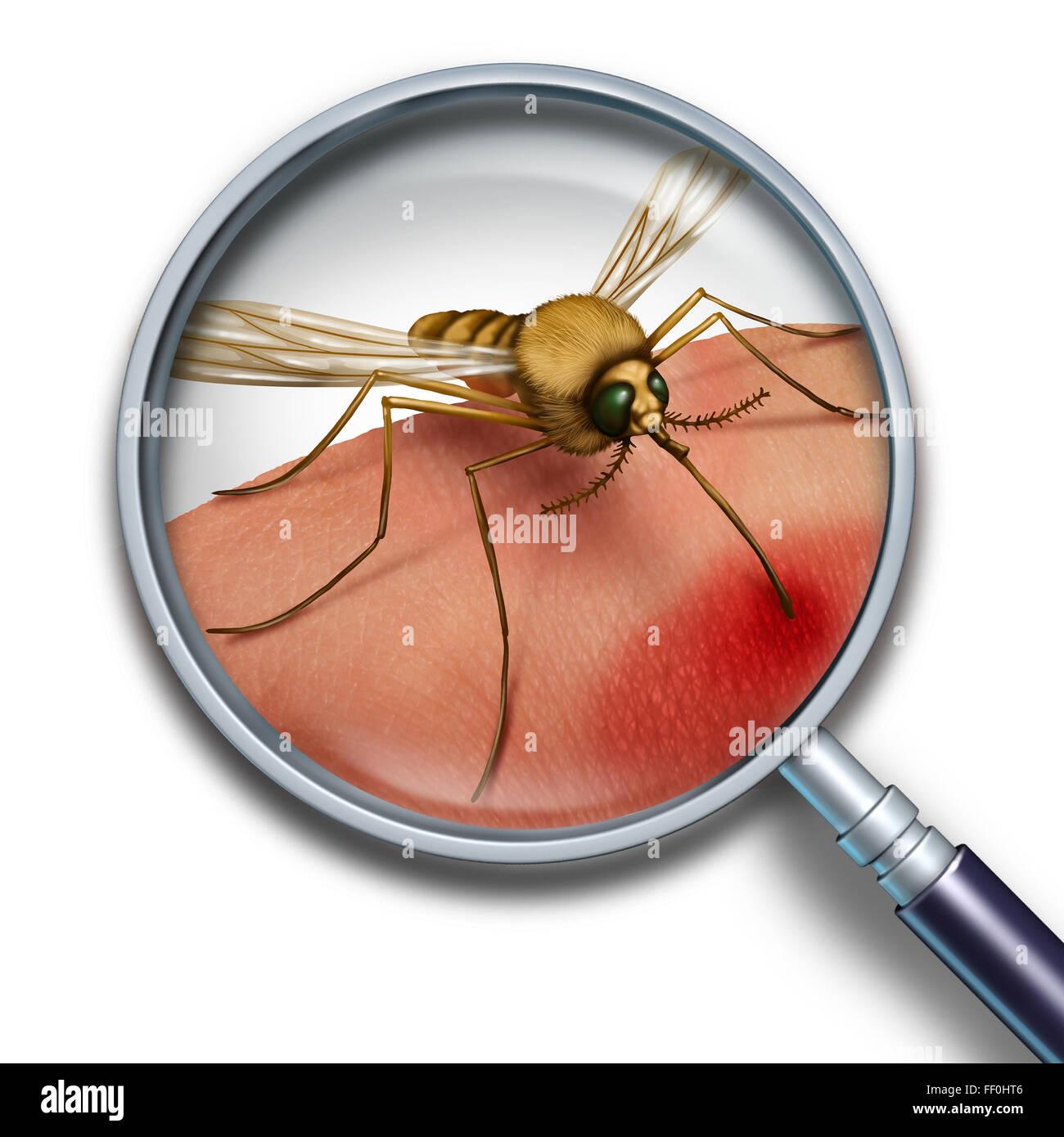 Moskito-Virus medizinisches Konzept hautnah mit einer Lupe und Zika Krankheit Risiko Symbol als ein Insekt beißt Stockbild