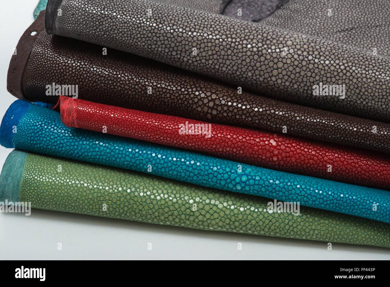 Ausgezeichnet Stingray Färbung Seite Bilder - Beispiel ...