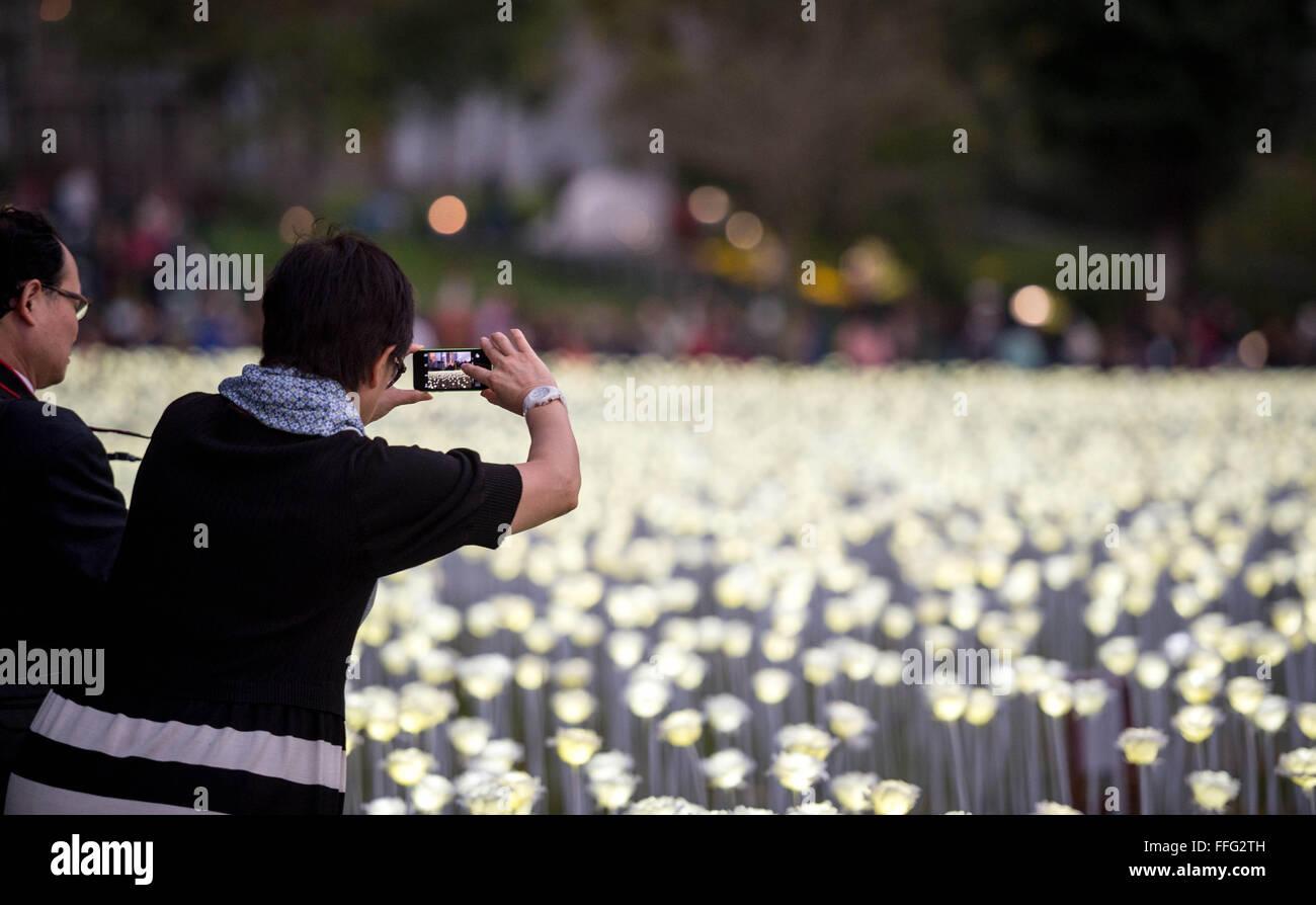 Ausgezeichnet Netz Leuchtet Weißen Draht Mit Weiß Fotos - Die Besten ...