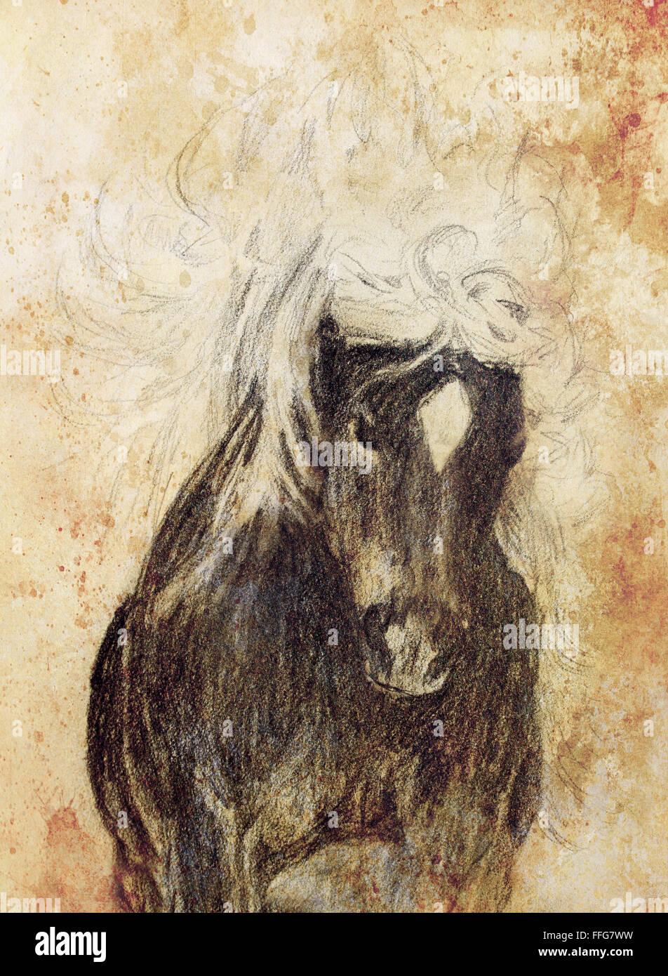 Bleistift Pferd Zu Zeichnen Auf Dem Alten Papier Und Alte Vintage