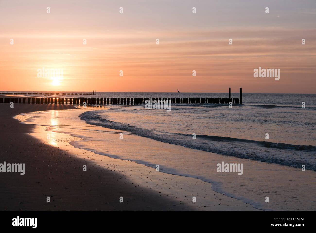 Strand nordsee sonnenuntergang  Strang, Raummotive, Domburg, Nordsee-Küste, Provinz Seeland ...