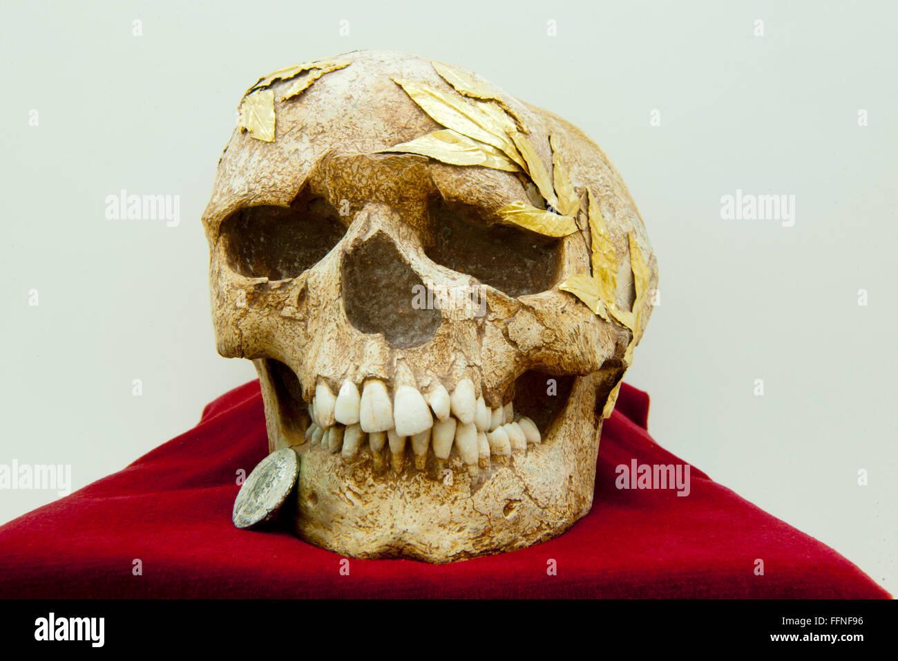 Archäologisches Museum, Römischer Totenschädel Mit Einer Münze Im Mund, Ein Obolus Für Stockbild