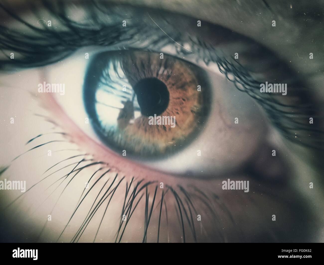 Extreme Nahaufnahme des menschlichen Auges Stockbild
