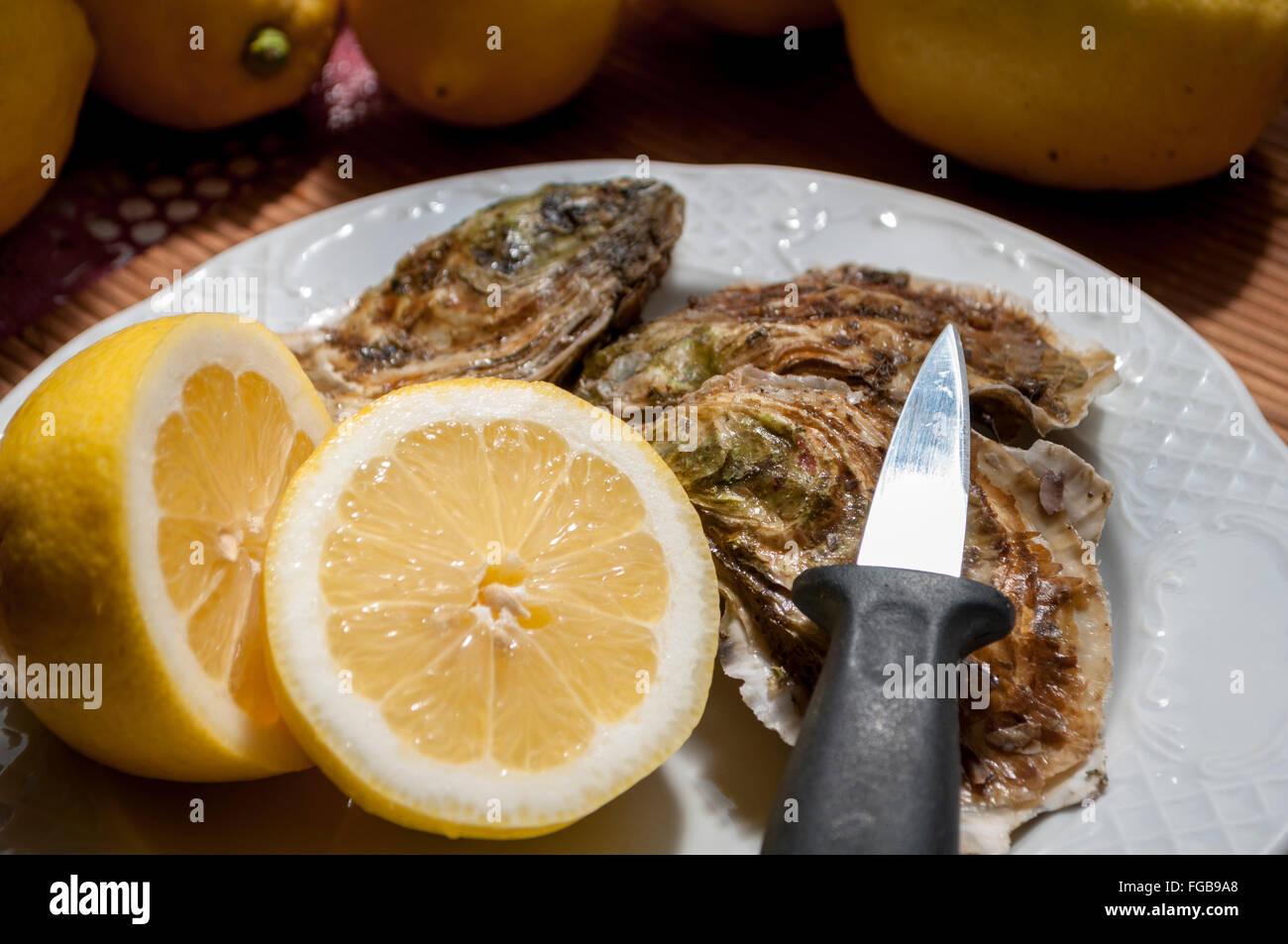 Zubereitung von Schalentieren für Verbrauch, öffnen Sie es, vor dem Hintergrund der Zitrone in die Hand Stockbild