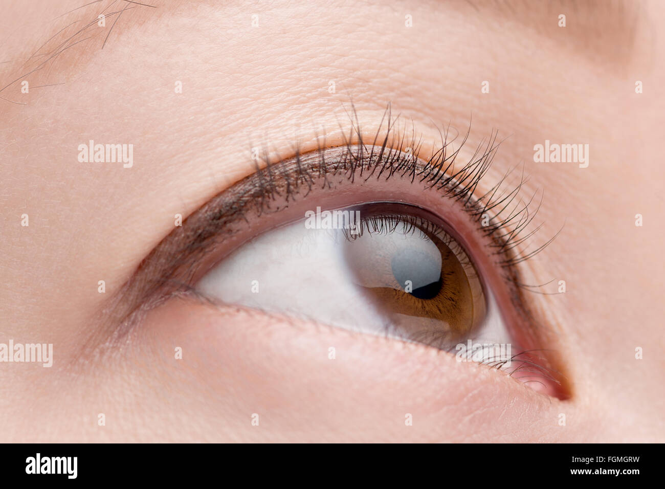 Eine wahre Makroaufnahme eines weiblichen Auges mit einer natürlichen, minimale Make up aussehen. Stockbild