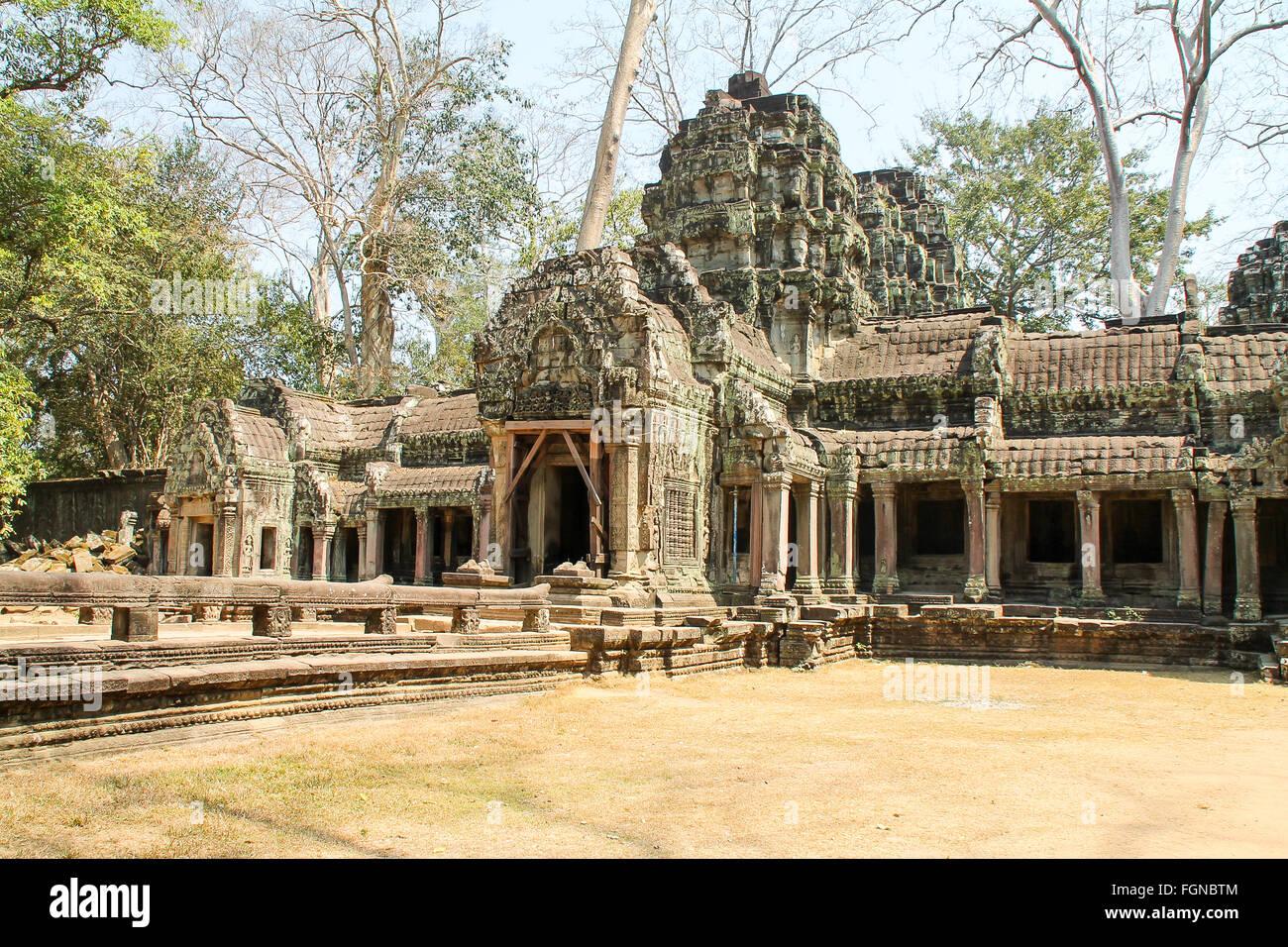 Landschaftsansicht der überwucherten Strukturen mit Bäumen, die durch das Gebäude von Angkor Wat, Stockbild