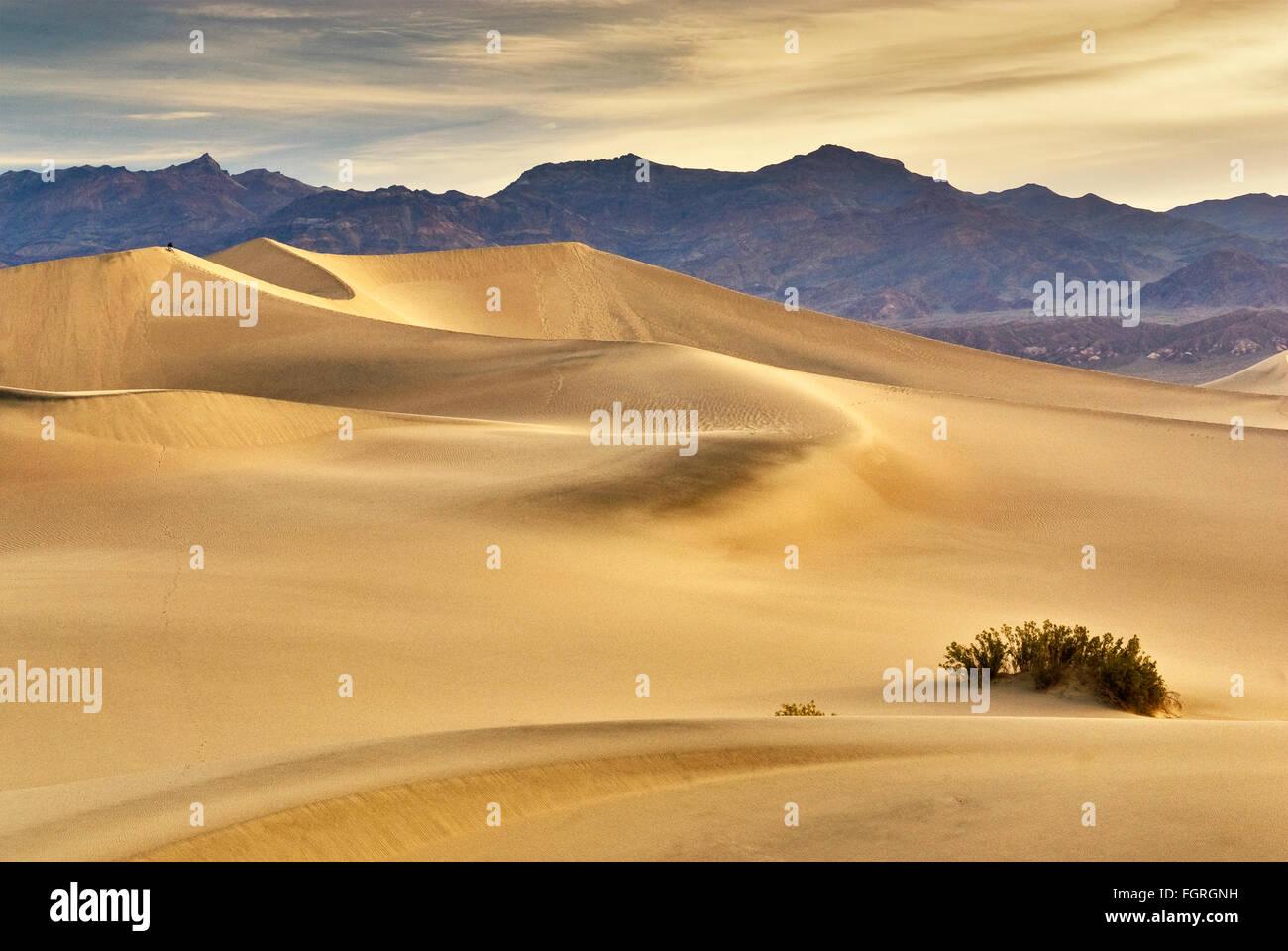 Flache Mesquite Sand Dunes und Amargosa Strecke im Abstand bei Sonnenaufgang in Death Valley Nationalpark, Kalifornien, USA Stockfoto