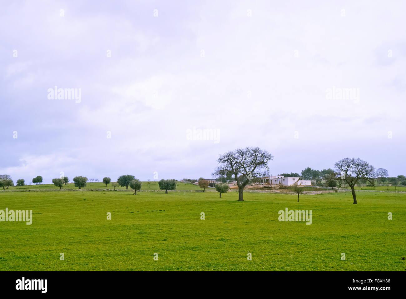 Bauernhof von Apulien. Stockbild