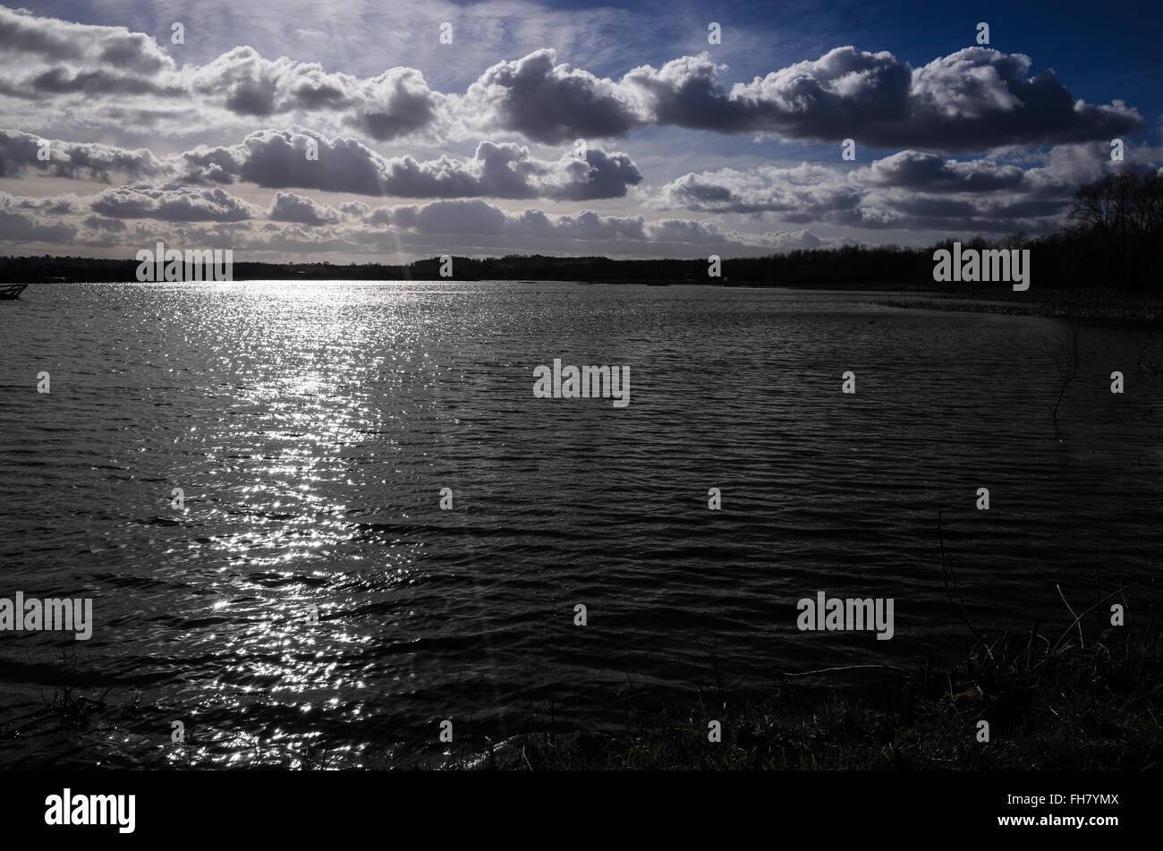 Sonnenlicht auf dem Wasser Stockbild