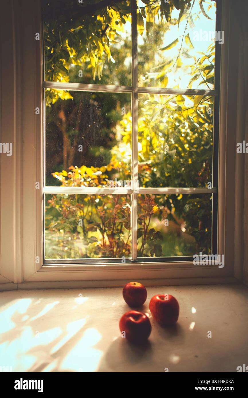Stillleben mit drei Äpfel auf Sommer Fensterplatz Stockbild