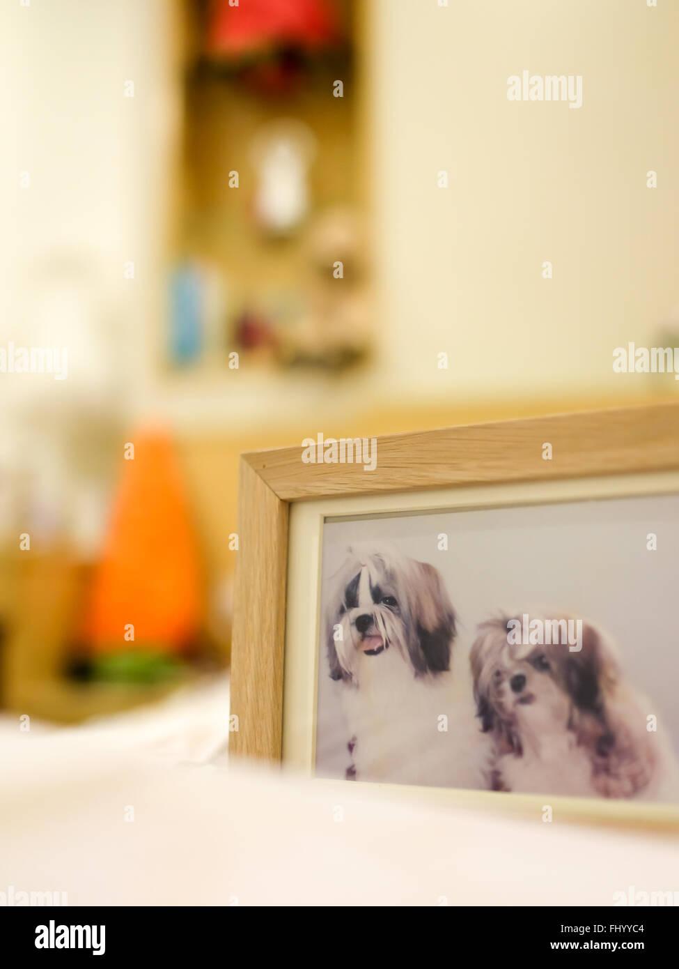 Berühmt Bilderrahmen Für Hunde Ideen - Benutzerdefinierte ...