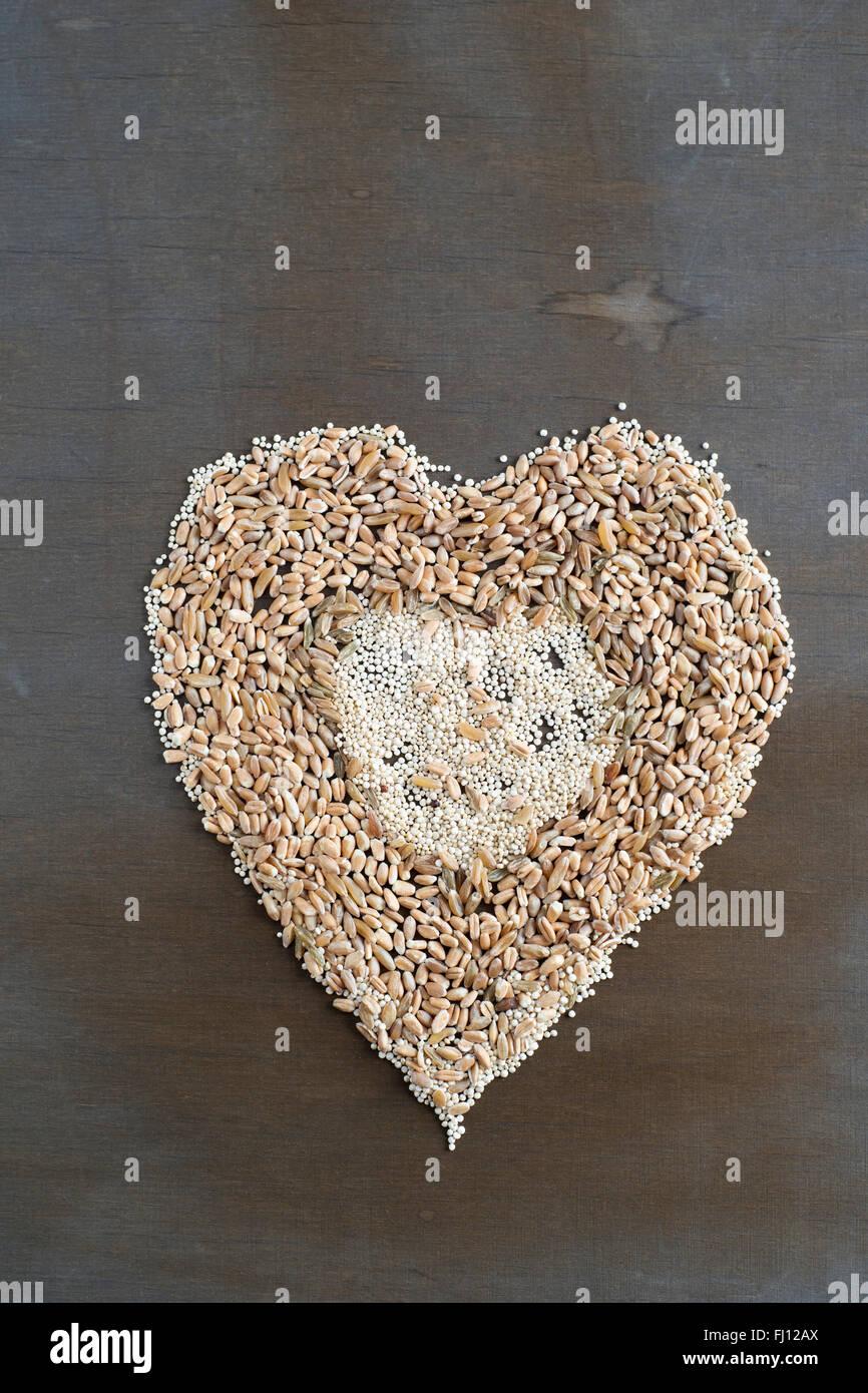 Verschiedenen Getreidesorten bauen ein Herz Stockbild