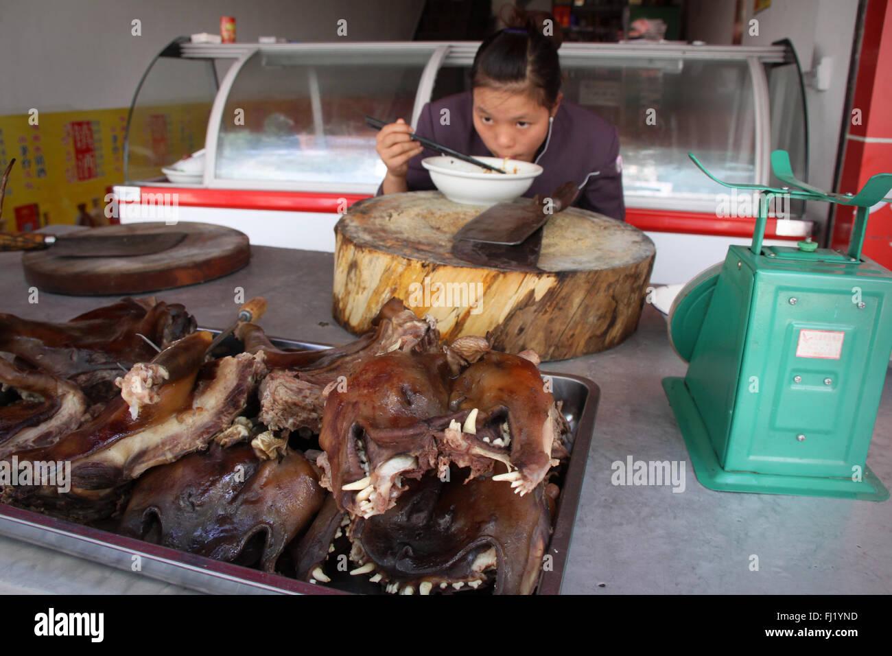 China Essen Hunde