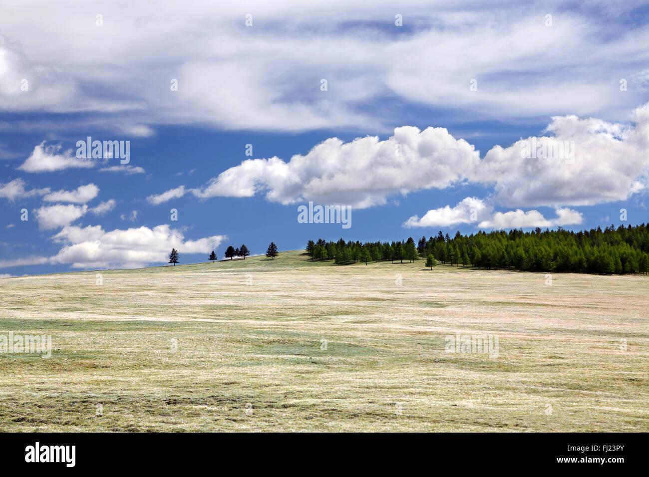 Grüne Mongolei Bilder von Menschen und Landschaften Stockfoto
