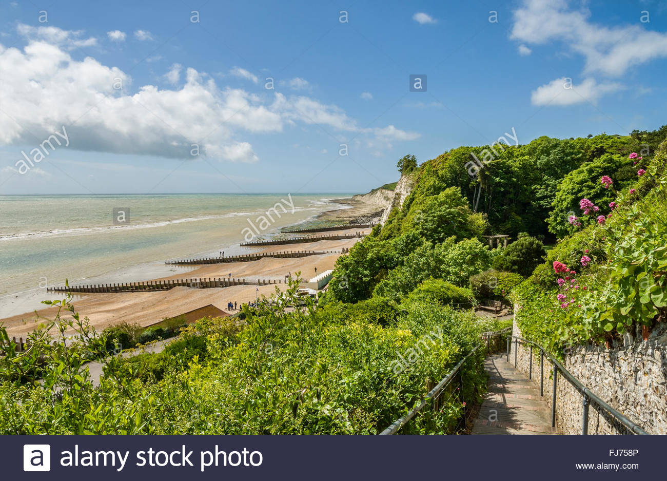 Beachy Head Nature Resort in der Nähe von Eastbourne, East Sussex, Südengland Stockbild
