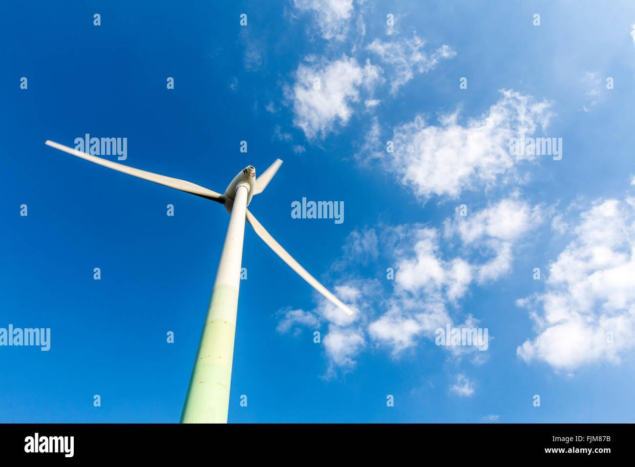 Windenergieanlage, Windenergieanlage auf Bergbau Heap Hoppenbruch in Herten, Deutschland Stockbild