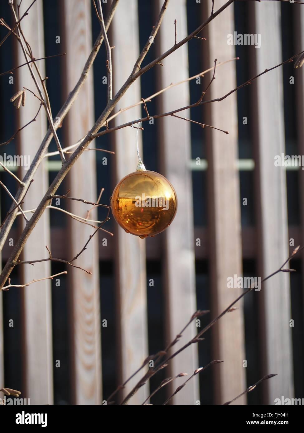 Nahaufnahme der Dekoration hängen getrocknete Pflanze gegen Zaun Stockbild